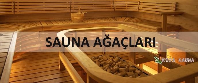 sauna-agaclari